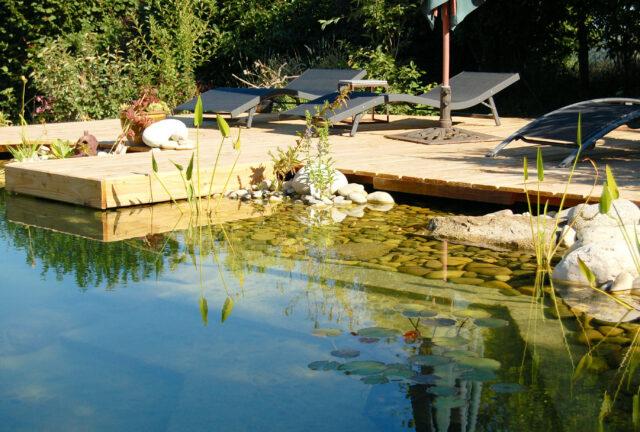 Natur-Pool mit biologischer Pumpe